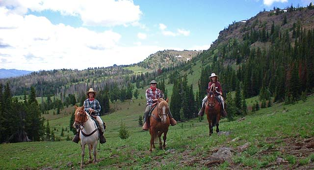 Horseback Riding in The Bridger Mountain Range